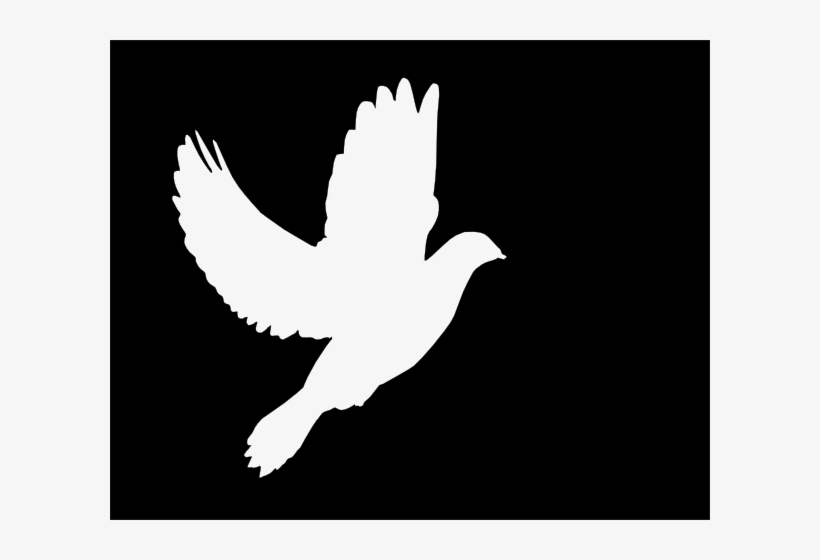 White Clip Art At - White Dove Vector Png, transparent png #658982