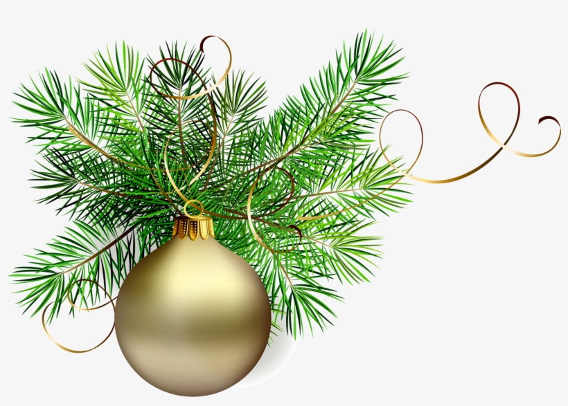 Transparent Gold Christmas Ball With Pine Clipart M=1381356000 - Christmas Tree Branch Png, transparent png #659151