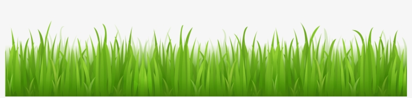 Green Grass Png Image Background - Grass With No Background, transparent png #665471