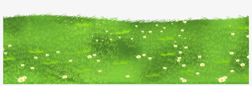 Grass ground. With daisies png clipart