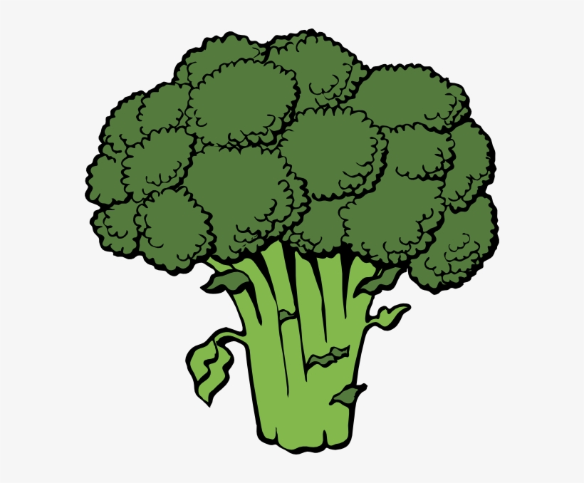png free stock vegetable free broccoli clip art vector clipart broccoli free transparent png download pngkey png free stock vegetable free broccoli