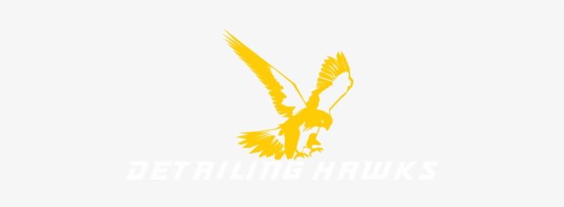 Golden Eagle, transparent png #675552