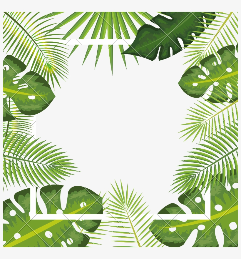Tropical Leaves Frame Background - Tropical Leaf Frame Png, transparent png #681837