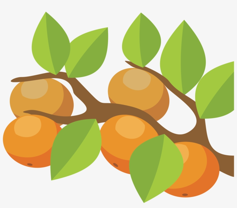 Orange Tree Png - Orange Tree Clip Art, transparent png #689922