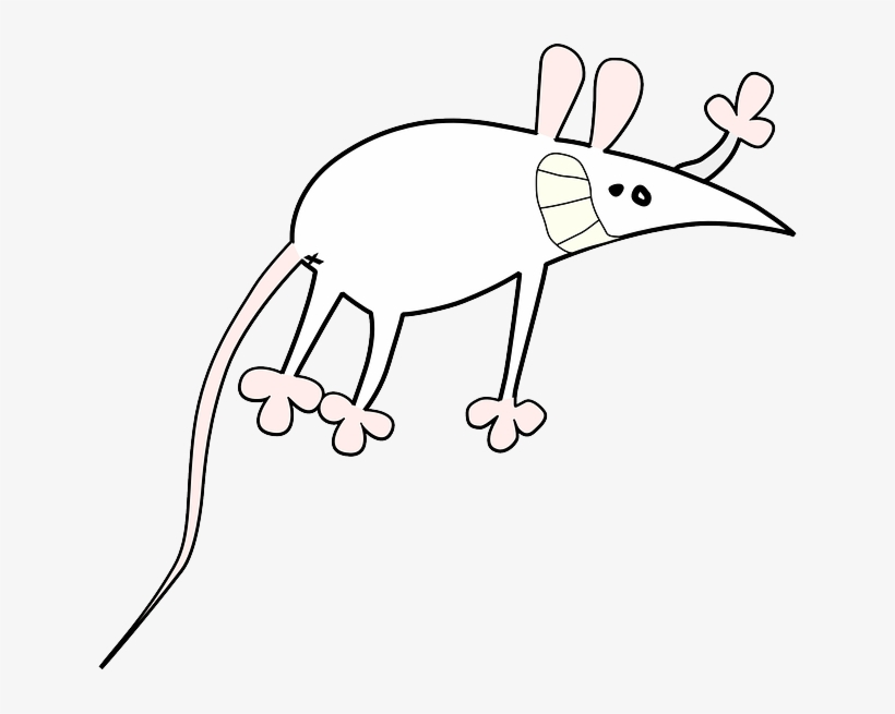 Mouse Small Outline Symbol Cartoon Rat Animal