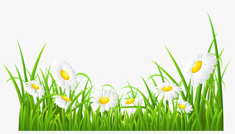 Royalty Free Green Grass Flowers Clipart White Daisies Clipart
