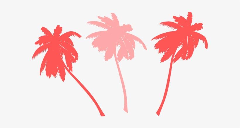 Vector Palm Trees Svg Clip Arts 600 X 359 Px, transparent png #71372