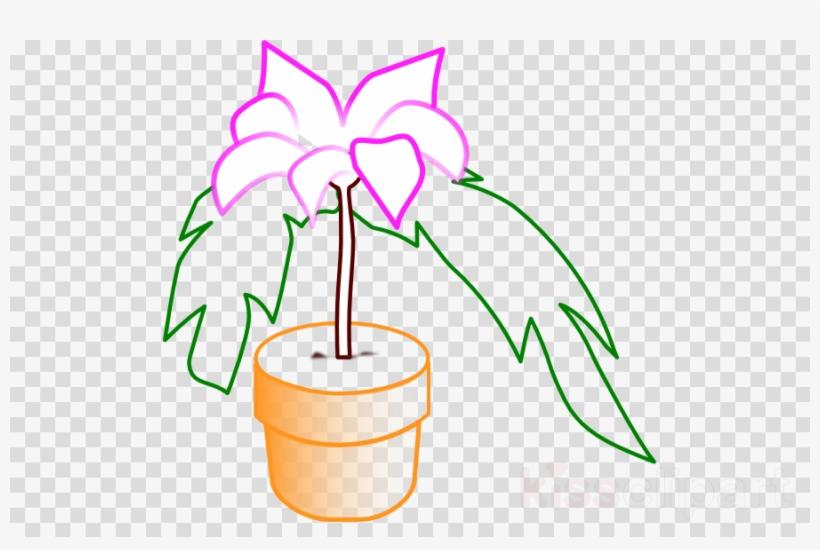Vektor Pot Bunga Ganja Clipart Clip Art Free Transparent Png