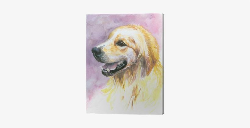 Labrador Golden Retriever Watercolor Painted - Designart 'sweet Yellow God Watercolor' Painting Print, transparent png #711899