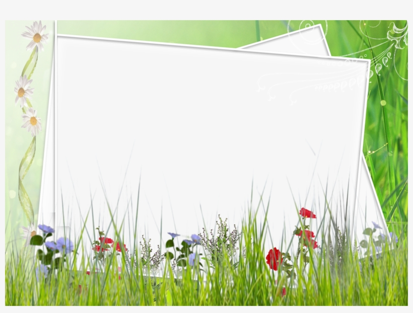 Image Black And White Download Green And White Transparent - Green Flower Borders And Frames, transparent png #717488