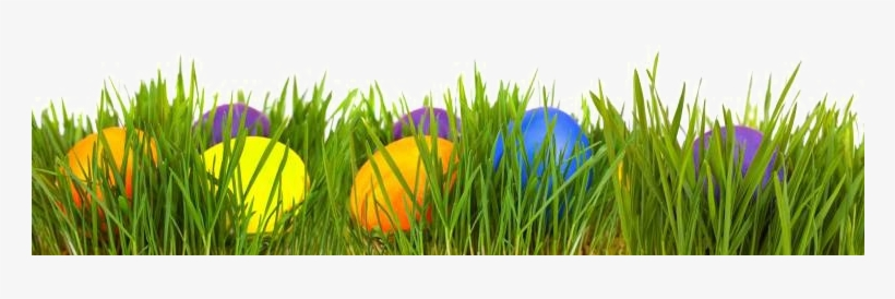 Eggs Transparent Image Arts - Easter Eggs In Grass Png, transparent png #719194