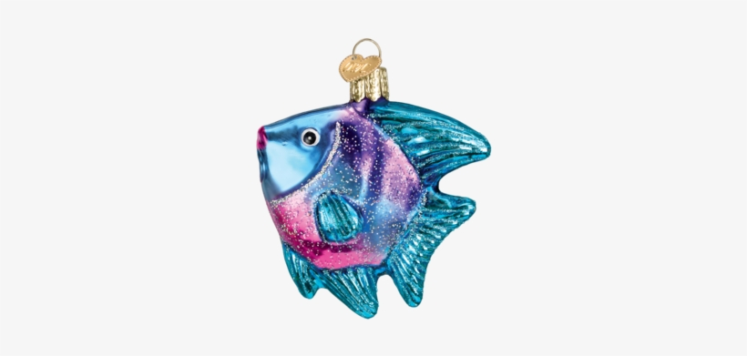 Tropical Angel Fish - Old World Christmas Glass Blown Blue Angel Fish Ornament, transparent png #734041