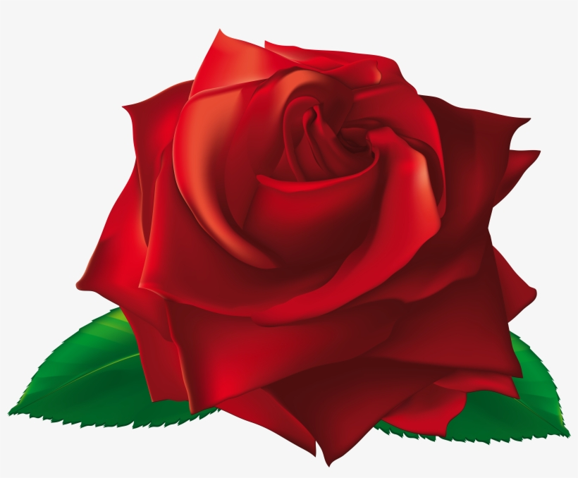 View Full Size - Single Rose Flowers Png, transparent png #736973
