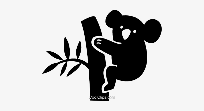 Koala Bear - Use Your Initials To Find Your Name, transparent png #767082