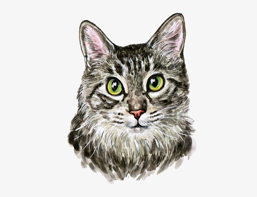 Cat Kitten Watercolor Painting - Cutest Cat Watercolor Painting, transparent png #7638224
