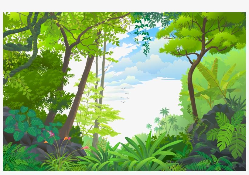 Tropical Euclidean Vector Jungle Rainforest Landscape Cartoon Tropical Forest Png Free Transparent Png Download Pngkey