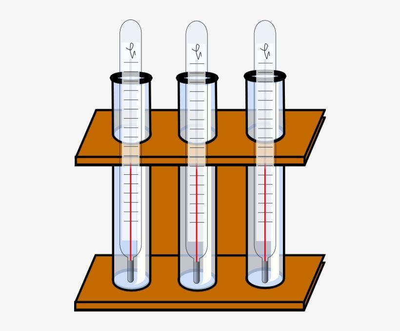 Test Tube Holder With Test Tubes, transparent png #7676380