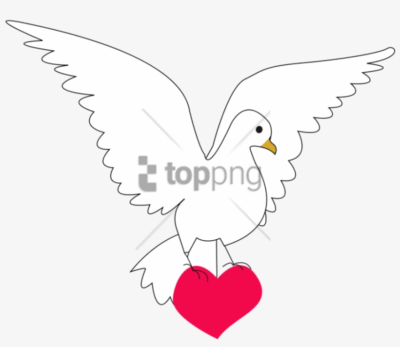 Dove, Heart, Amour, Love, Peace, Symbol - Paloma De La Paz Y Amor, transparent png #777947