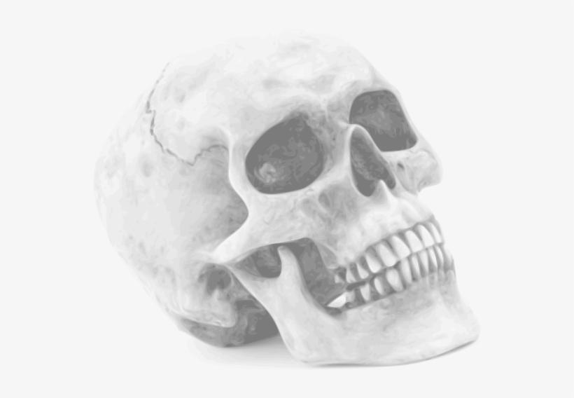 Skull Halloween Skull - Halloween Skull Shower Curtain, transparent png #778289
