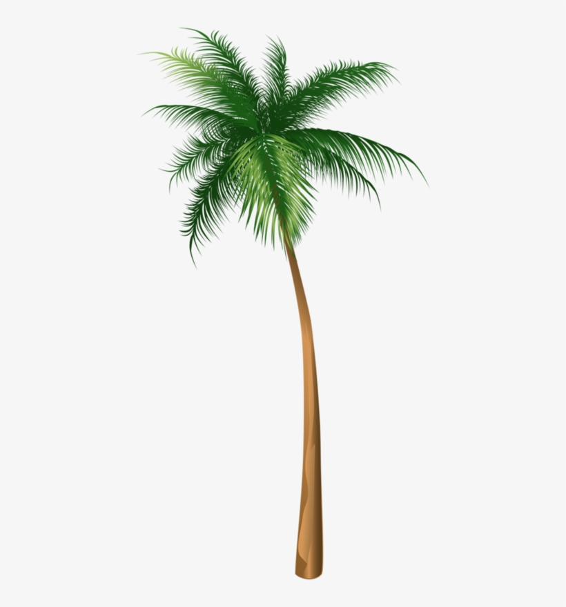 Arecaceae Coconut Tree Illustration Hq Image Free Png - Coconut Tree Illustration, transparent png #7754231