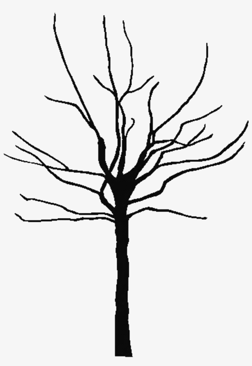 Bare Tree Clipart - Bare Clipart Tree, transparent png #785521