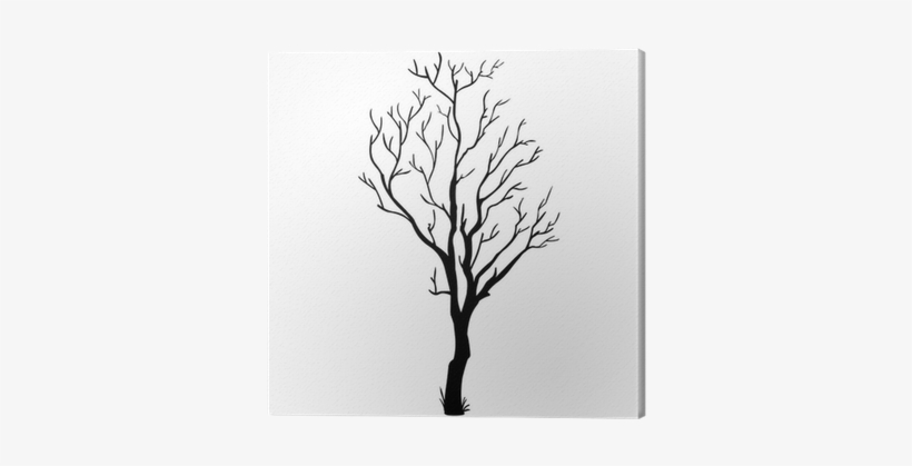 Vector Black Silhouette Of A Bare Tree Canvas Print - Bare Tree Branch Vector, transparent png #786141