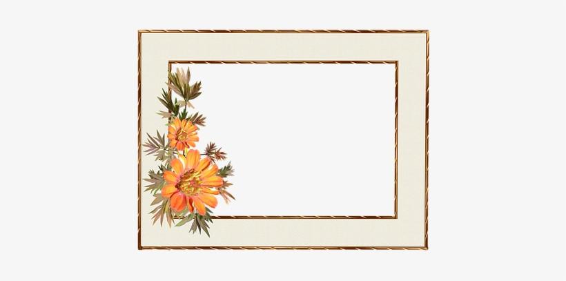 Frame, Floral, Gold Border, Decoration - Decorative Frame Border Png, transparent png #789661