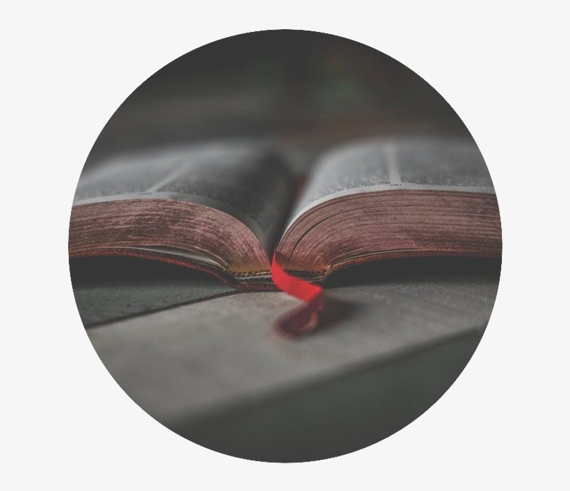 Open Bible - Bible, transparent png #7800756