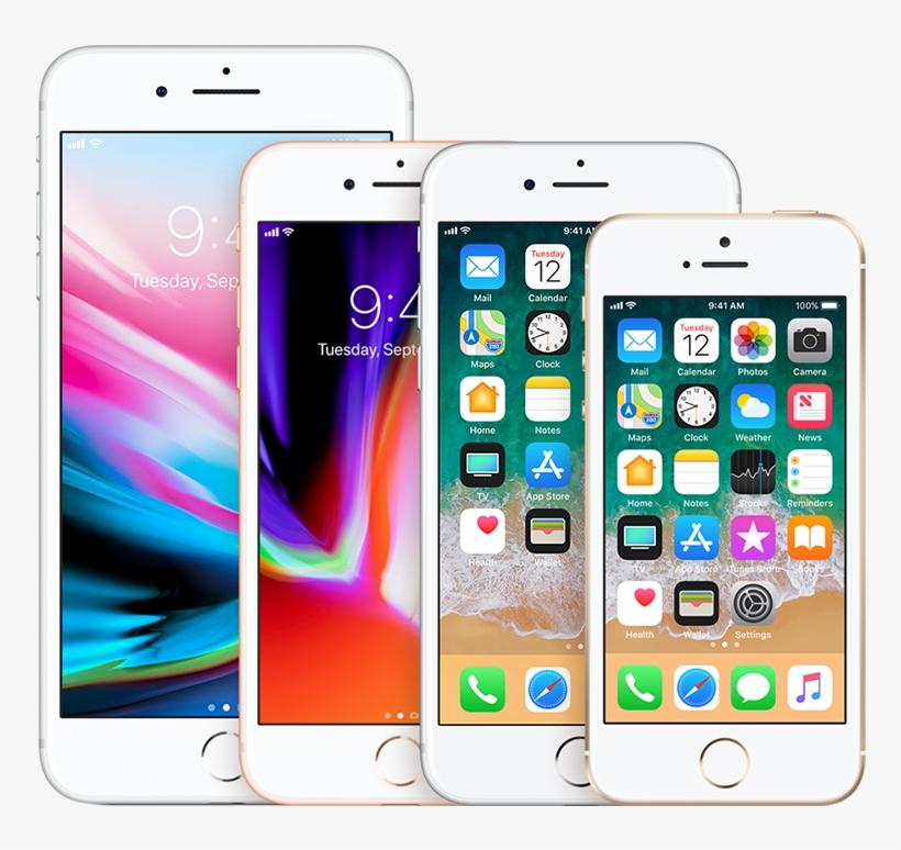 800 X 800 2 - Iphone Se Rose Gold Front, transparent png #7858930