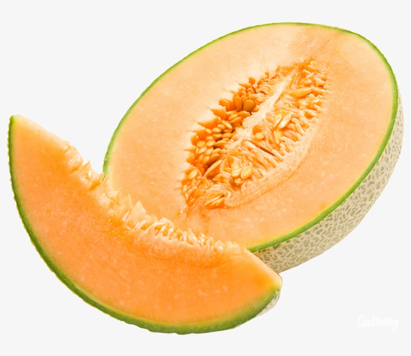 24 gambar kartun buah melon