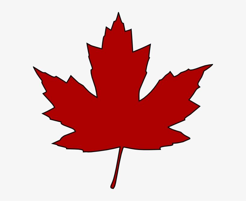 Maple Leaf Clip Art Free Vector 4vector - Canadian Maple Leaf Clipart, transparent png #7932083