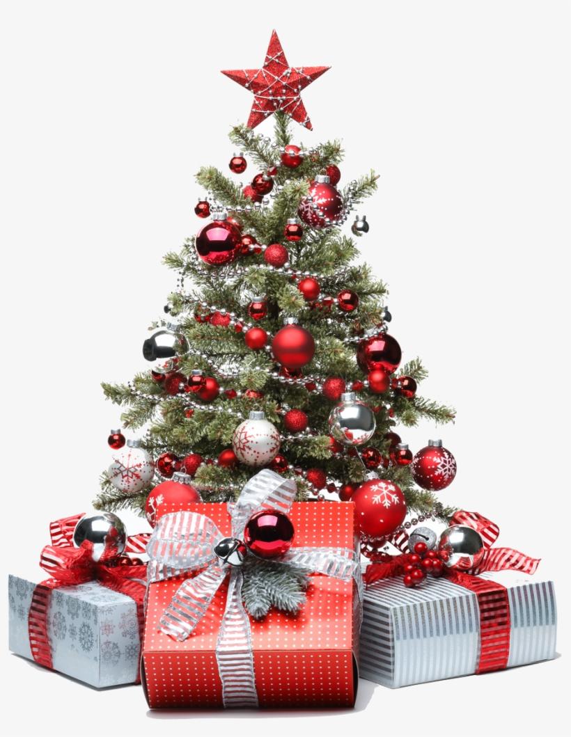 Tesco Christmas Trees Lights Decoration Tree Decorations - Money Under The Christmas Tree, transparent png #7934512