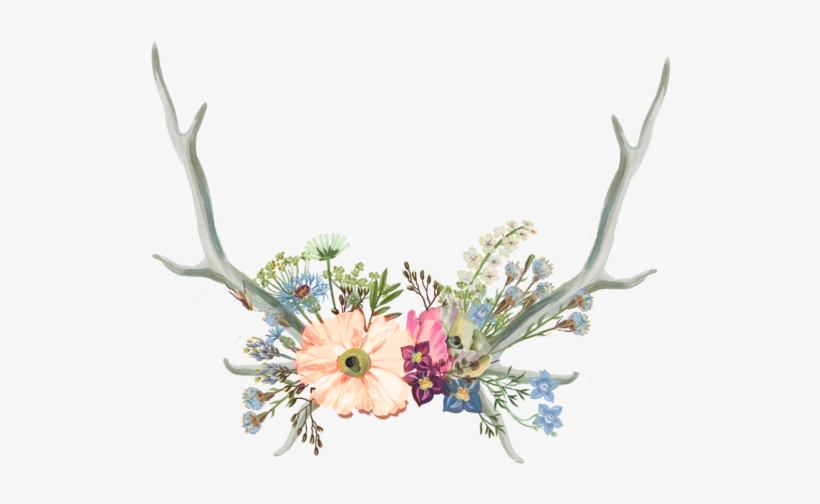 Antler Clipart Flower Crown - Aesthetic Tumblr Flower Drawing, transparent png #7983412