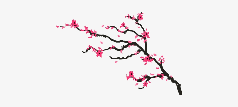 Drawn Cherry Blossom Transparent - Cherry Blossom Drawing Png, transparent png #82670