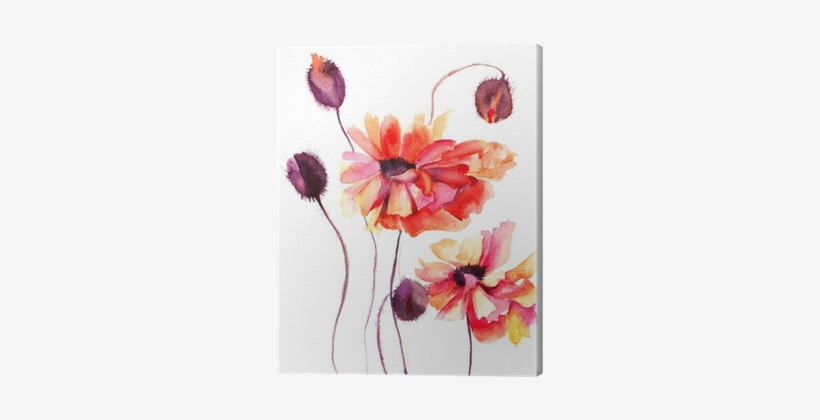 Beautiful Poppy Flowers, Watercolor Painting Canvas - Let Go Of What Makes You Sad, transparent png #85282