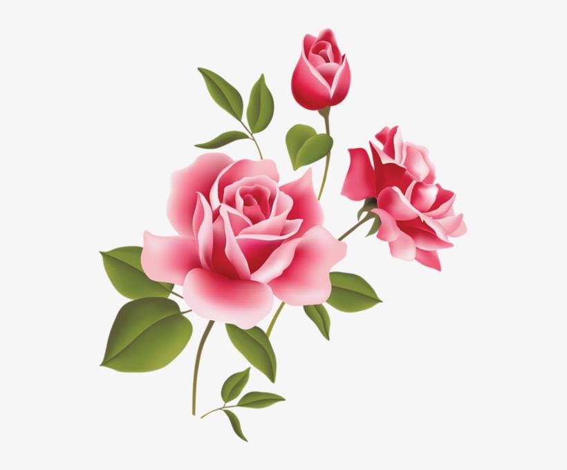 Flower Vector Png Image Purepng: Flores Vector Transparent