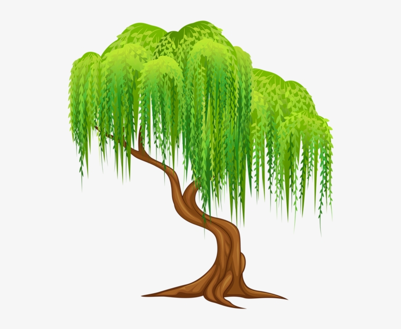 Tree Clipart - Weeping Willow Tree Clipart, transparent png #89360