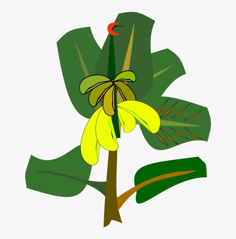 Banana Leaf Drawing Cartoon Clipart Cartoon Banana Tree Free