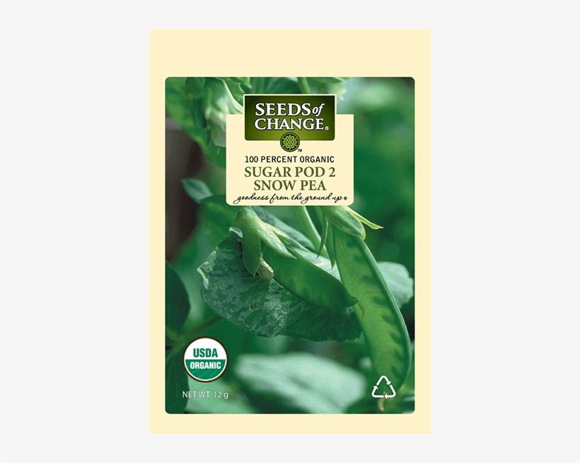 Organic Sugar Pod 2 Snow Pea Seeds - Usda Organic, transparent png #8058401