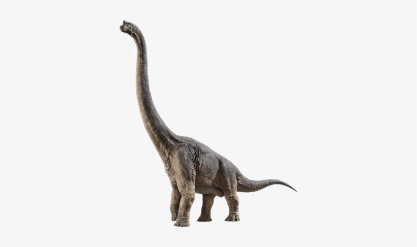 Brachiosaurus - Jurassic World Fallen Kingdom Stegosaurus, transparent png #810436