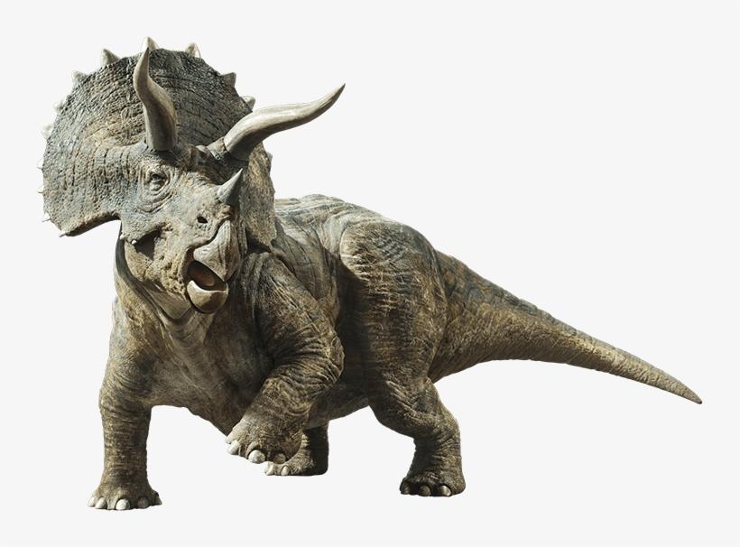 Jurassic World Fallen Kingdom Triceratops By Sonichedgehog2-dc9dwcu - Triceratops Jurassic World Fallen Kingdom, transparent png #810546