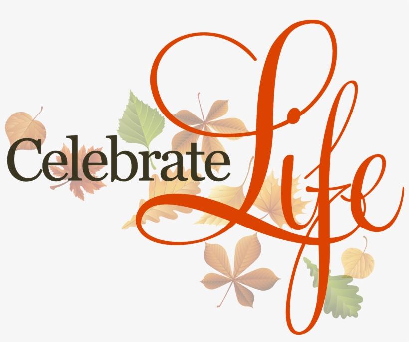 Celebrate Life - Transparent Celebration Of Life Png, transparent png #813857