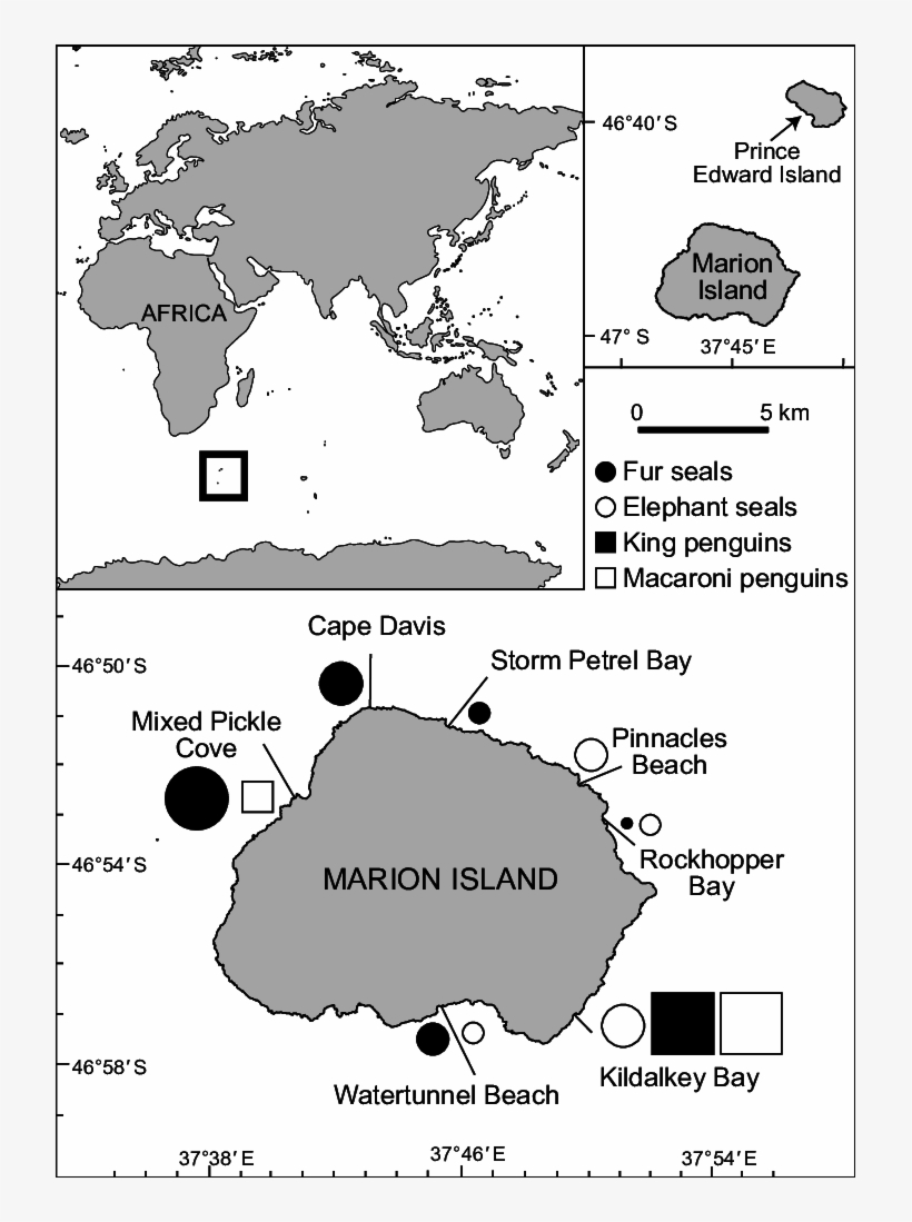 Map Of Marion Island Showing The Locations Where Dedicated - World Map Mark Off Where You Ve Been, transparent png #8132573