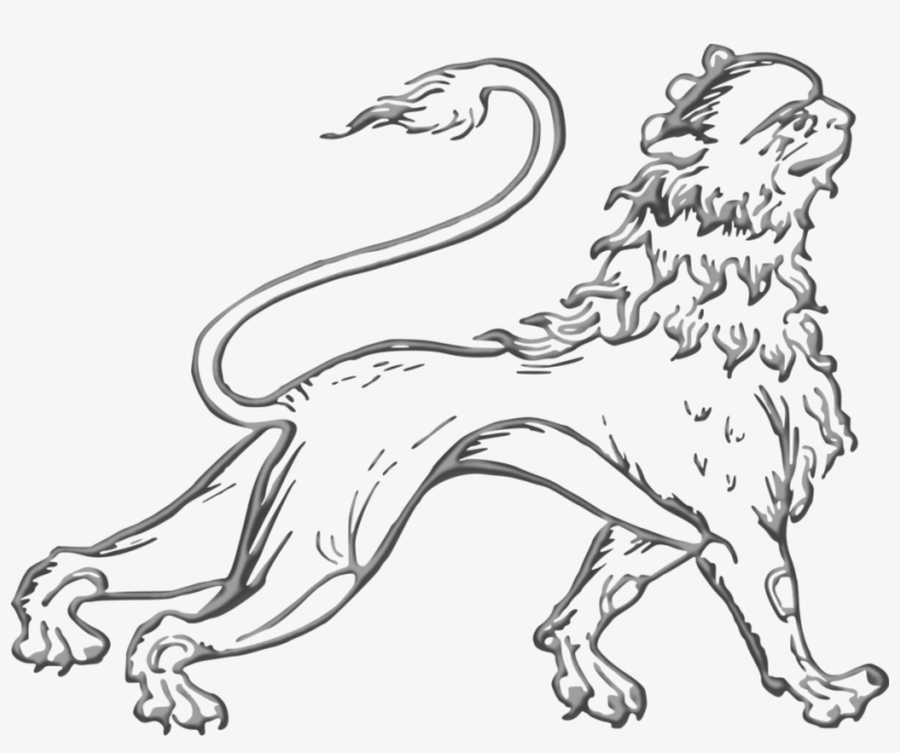 Sea Lion Dog Breed Felidae Drawing - Lion, transparent png #8135957