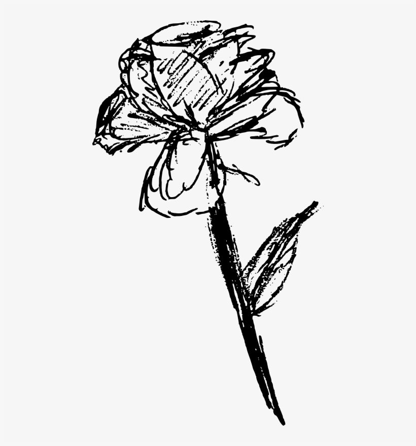 This Png File Is About Line Art Nature Flower All