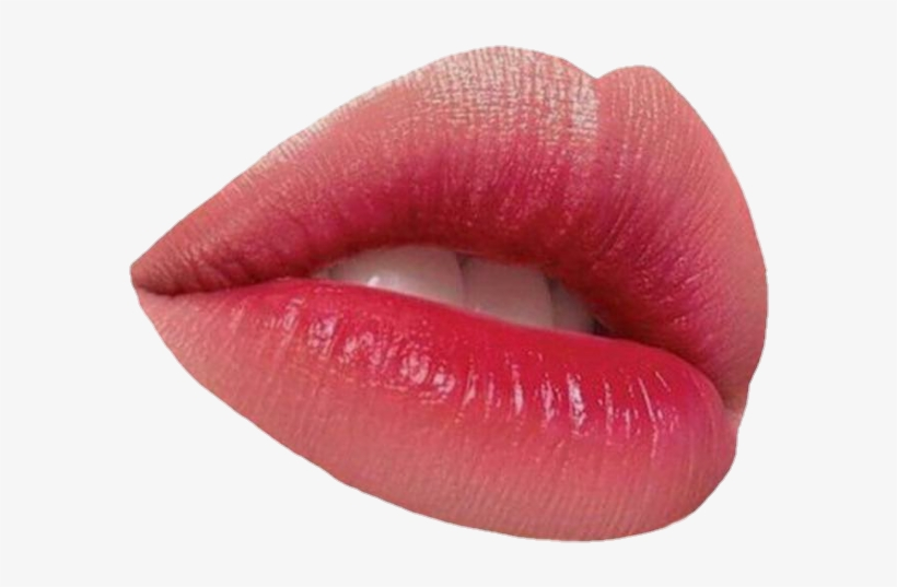 Png Transparent Lip Transparent Lip Png Lips - Lip Gloss, transparent png #8192740