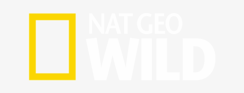 National Geographic Strives To Offer Intelligent, Relevant - National Geographic, transparent png #828752