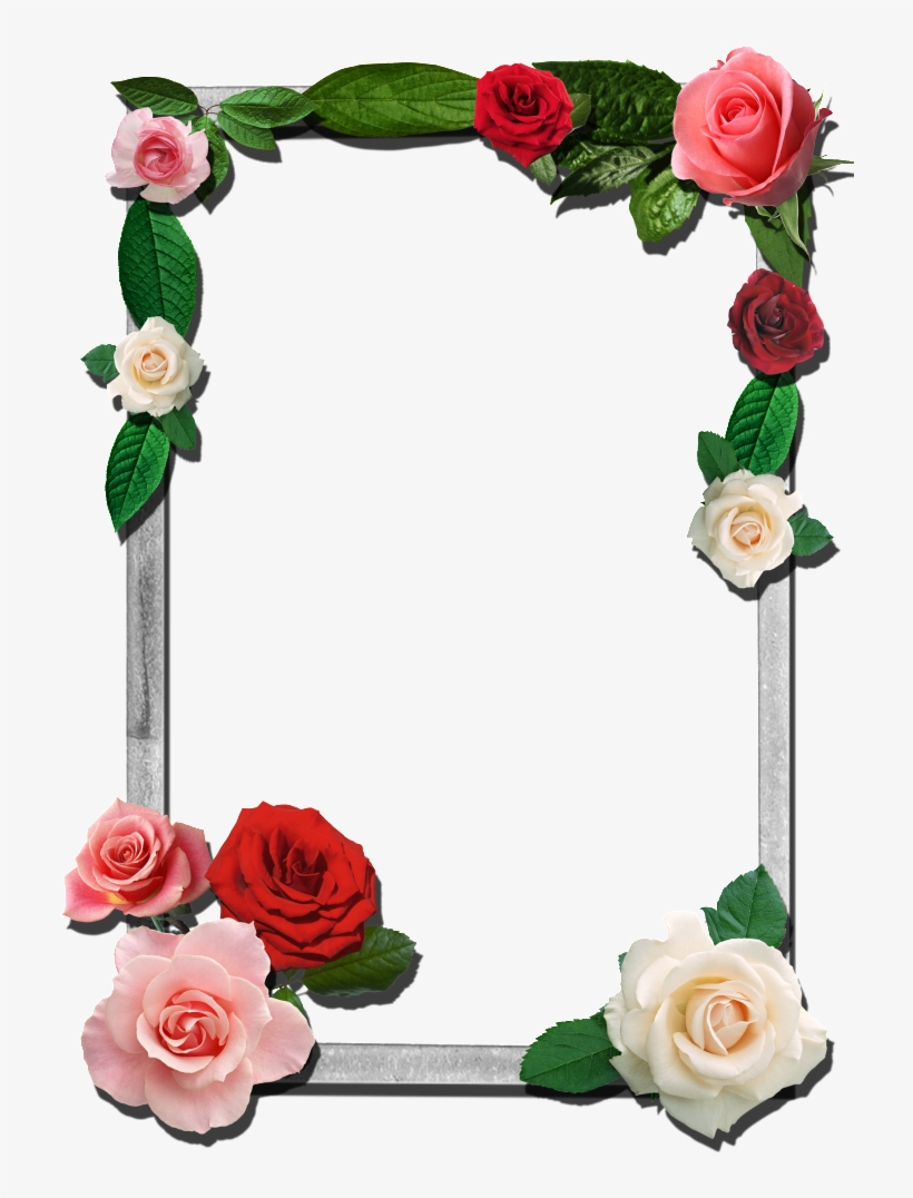 Roses This Photo Was Uploaded By Razadelumina Flower - Png Photo Frames For Photoshop, transparent png #8244192