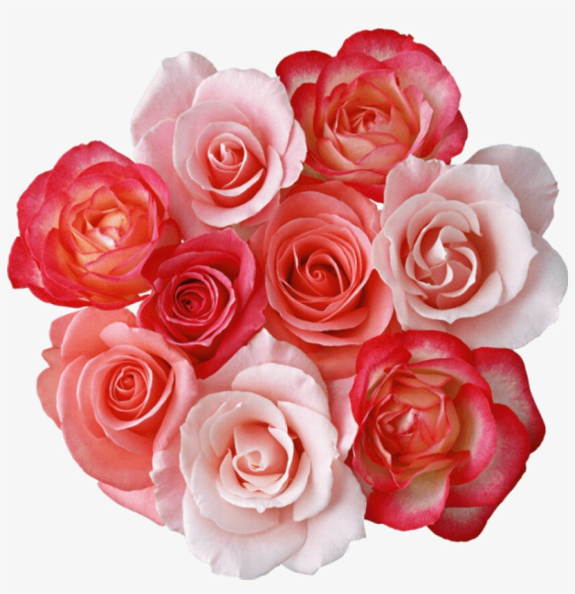 Free Png Download Roses Bouquet Png Images Background - Beautiful Dp Rose Flower, transparent png #8290590