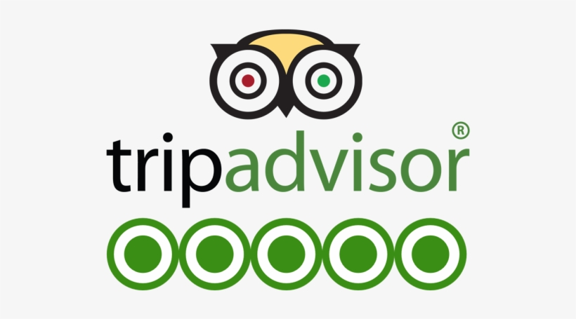 Tripadvisor-logo - Free Transparent PNG Download - PNGkey
